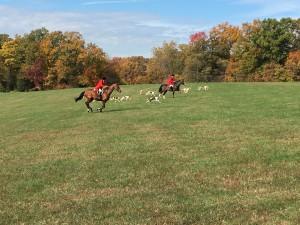 Fox Hunt at Mount Vernon