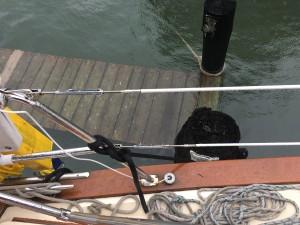Sea Level Rise on docks at Portsmouth, VA