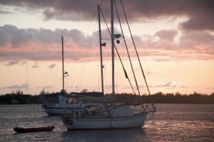 Sunset Highborn